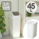 ゴミ箱スリムダストボックスレコロ本体45L ( ごみ箱 くず入れ トラッシュボックス リビング キッチン トラッシュ ペール シンプル トラッシュカン トラッシュボックス 45リットル 45l )