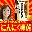 [S]すっぽん発酵黒にんにく卵黄12袋セット送料無料