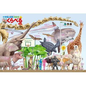 Puzzle 300 pièces grand format Plus à comparer Livre d'images Différentes tailles [B61-418] [72 x 49 cm] [Beverly]