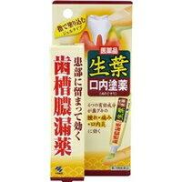 【第3類医薬品】生葉口内塗薬 20g小林製薬 歯周病用 口中薬