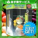 (あす楽対応)(野菜調理器)日本製 サンローラ サラダセット(cooking cutter SALAD SET) 4プレート安全器付き+さらに選べるおまけGET セット - 切れ味も味のうち!話題のスーパースライサー。【smtb-s】