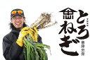 【農家直送】佐藤忠保の「とろねぎ」3kg(13〜17本入り) 会津産 雪下ねぎ 越冬ねぎ