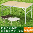 120cm×80cm アルミレジャーテーブル HXT-881...