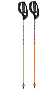 sinano skiing pole [CK-14 ボーグ付@31860]シナノ  スキーポール  【送料無料】