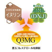 イヌリン1-デオキシノジリマイシンQ3MG