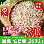 もち麦国産2850g(950g×3袋)モチプリで美味しく健康生活LOHAStyle