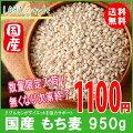 もち麦国産950gモチプリで美味しく健康生活