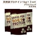 【予約:10月22日以降発送予定】 ホエイプロテイン チョコ ( ココア ) 3kg (1kg×3袋) グラスフェッド(USDA認証取得原料) 牛成長ホルモン不使用 アミノ酸スコア100 ナチュラル Non-GMO ホエー WPC おきかえダイエット 女性 にもオススメ LOHASports ロハスポーツ