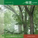 【528Hz CD】 ハルニレ2 樹環 (JU-KAN) 知...