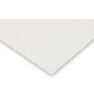 プラダンシート 301x301mm[寸法精度有り] 図工 工作 美術 画材 学校 教材 小学生 クラフト ホビー