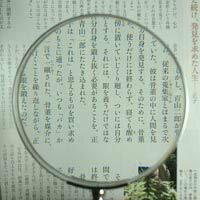 放大鏡 [掌上型放大鏡放大鏡放大鏡她] 木柄放大鏡 1451年-P 100 毫米池塘水稻透鏡放大鏡放大鏡放大鏡