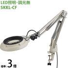 LED照明拡大鏡 コンパクトフリーアーム・クランプ取付式 調光無 SKKLシリーズ SKKL-CF型 3倍 SKKL-CFX3 オーツカ光学