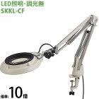 LED照明拡大鏡 コンパクトフリーアーム・クランプ取付式 調光無 SKKLシリーズ SKKL-CF型 10倍 SKKL-CFX10 オーツカ光学