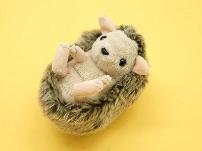 真ん丸になってる「はりねずみ」のぬいぐるみ!ハリネズミのチッピ サイズ:L11cm(メール便NGです)