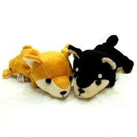 LittleBeans柴犬1