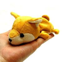 LittleBeans柴犬2