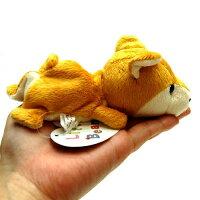 LittleBeans柴犬4