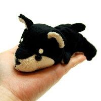 LittleBeans柴犬5