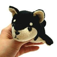 LittleBeans柴犬6