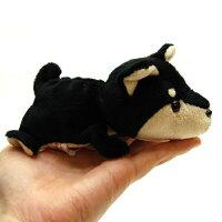 LittleBeans柴犬7