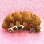 ヨコヅナクマムシ XL サイズ:50cm(送料無料♪)Water bear/Tardigrades/Ramazzottius varieornatus