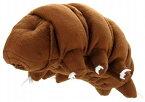 最強生物 クマムシL サイズ:30cm Water bear/Tardigrades/Ramazzottius varieornatus/Hypsibius dujardini