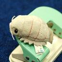 深海魚シリーズムニュマム マグネット ダイオウグソクムシ サイズ:6cm(メール便OK!)
