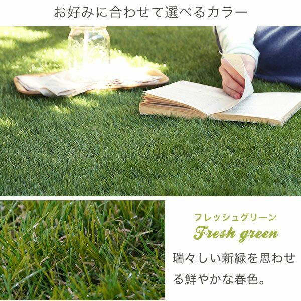 人工芝 ロールタイプ 幅1m×長さ10m