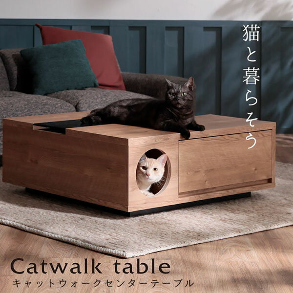 猫 ローテーブル テーブル ペット センターテーブル コーヒーテーブル おしゃれ 雑貨 ガラス 強化ガラス モダン シャビー ねこ ネコ リビング 穴 木製 半完成品 小さめ 小さい ミニ テレワーク 在宅 リモートワーク