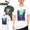 PUMA プーマ 579125GRAPHIC PALMS PHOTO SS TEEグラフィック パームス フォト Tシャツ カットソー トップス ストリート スポーツ メンズ レディース 半袖 2カラー 国内正規 20%OFF セール