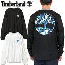 Timberland ティンバーランド TB0A1Z1S
