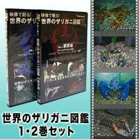 君は本当にザリガニを知っているか?世界初のザリガニ専門DVD。楽しむメディアシリーズDVD世界の...