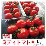 朝採り即日発送完熟ミニトマトフルーツトマト和歌山中居農園1kg(250g×4パック)