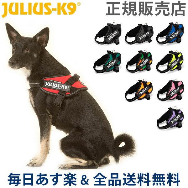 首輪・胴輪・リード, 胴輪・ハーネス  Julius-K9 IDC Mini Mini Mini 4067cm IDC Powerharness