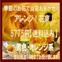 【ポイント】【おまかせ】【黄色オレンジ】店長おすすめ!おまかせアレンジ&花束5775円!黄色・オレンジ系【送料無料】誕生日・御祝・記念日などに【smtb-TD】【saitama】