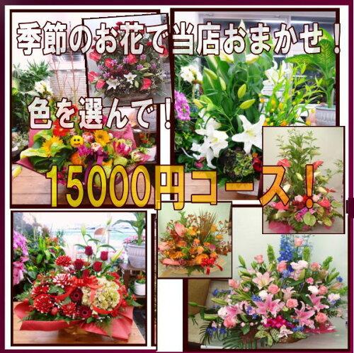 季節のお花で当店おまかせ!15000コースお歳暮!開店!誕生日・記念日に...