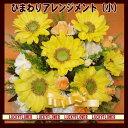 【父の日】【夏限定】 人気ひまわりアレンジ(小)【送料無料】【smtb-TD】【saitama】【黄色オレンジ】