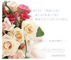 【バラの言葉】2MessageForeveryou(Y)正方形(Y)