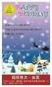 【ルナルーチェ】楽天市場店で買える「サンタクロース ギフト 【メッセージカード 引き出物・引き菓子 プチギフト】」の画像です。価格は1円になります。