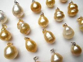 白蝶真珠ゴールドシャンペーン