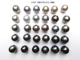 黒蝶真珠15mm