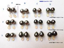 黒蝶真珠ペア