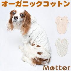 犬の服【草木染ドット柄半袖Tシャツ】(1-3号・小型犬の洋服)オーガニックコットンのドッグウエア[オーガニックコットンのミュッター]