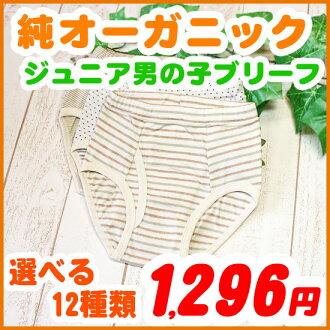 Kids briefs boys underwear ( 120・130 and 140・150 cm ) Kid's children and atopic skin-friendly organic cotton inner Briefs