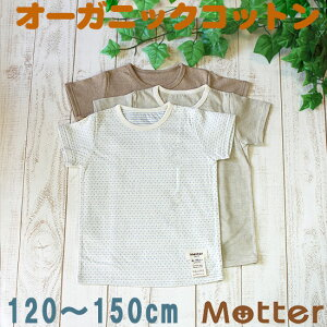 肌着 ジュニア 男の子 半袖肌着 選べる12種類半袖Tシャツ インナーシャツ オーガニックコットン 綿 日本製 小学生 男児 綿100% インナー boy junior underwear inner shirt 120cm 130cm 140cm 150cm