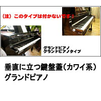 安全安心!フィンガード限定特価【ピアノ】【名古屋のピアノ専門店】