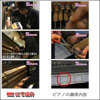 ピアノ調律・アップライトピアノ(定期調律専用)