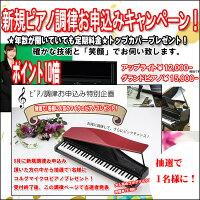 ピアノ調律人気企画!縦型東海地区の方ピアノ調律キャンペーン!何年空いていても只今、定額料金!1年の保障も付きます!プレゼント付き!