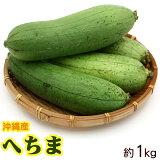 沖縄産へちま(ナーベーラー)約1kg │沖縄野菜 食用 ヘチマ│