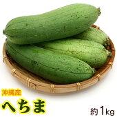 沖縄産へちま(ナーベーラー)約1kg※お一人様5kgまで。